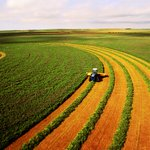 Purchase agricultural land in India