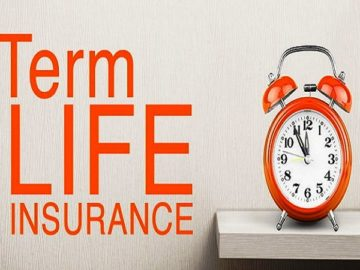 term insurance plan, nrihelp.info