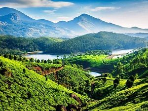 munnar, nrihelp.info, tourism in india