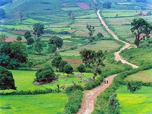 araku valley, nrihelpinfo, tourism in india
